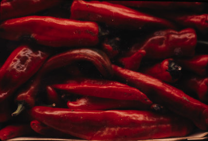 Still life of red peppers