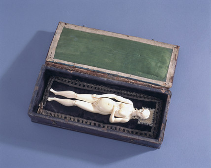 Ivory anatomical figure, posibly 17th century.