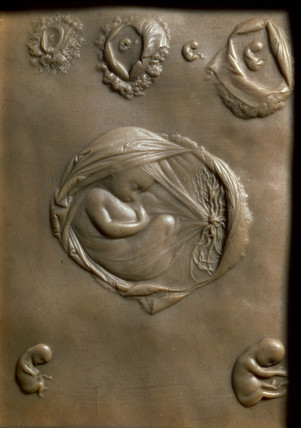 The development of the human embryo, early 19th century.