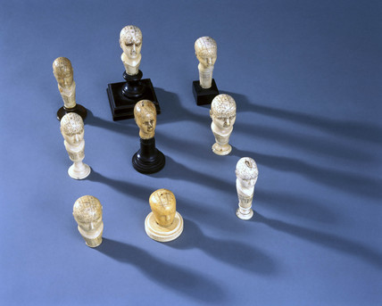 Ivory phrenological heads, 19th century.