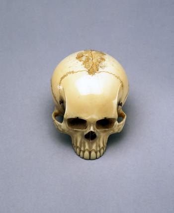 Model of a skull, probably a netsuke, Japanese.