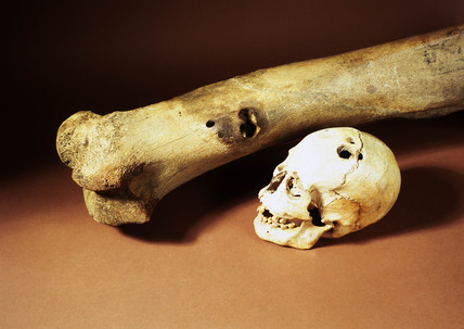 Skull & Pleistocene mammoth femur, Bronze Age.