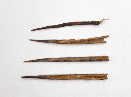 Sutures made of thorns and fibre cord from Mombasa, Kenya.
