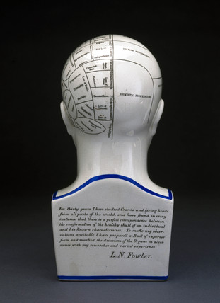Fowler's phrenological head, English, 1860-1896.