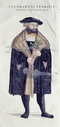 Leonard Fuchs, 1545.