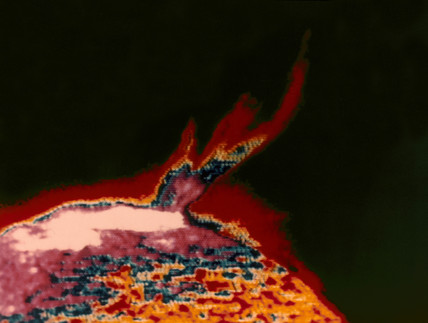 False colour image of a solar flare photographed from Skylab, 1973