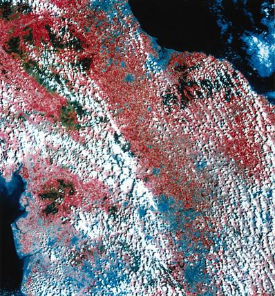Landsat image of northern England, 1982.