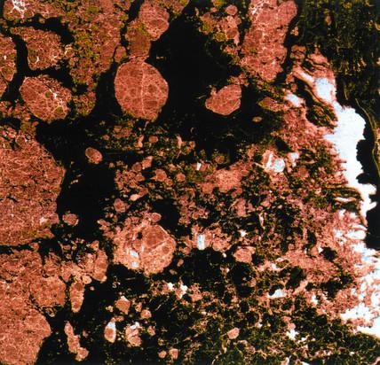 Seasat image of sea ice, 1978.