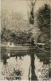 Warleigh Ferry c.1910