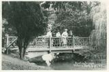 Rustic Bridge, Victoria Park, Bath c.1916
