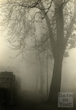 A foggy November, probably DeMontalt Place, Combe Down, 1950s