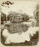 The lake, Royal Victoria Park, Bath c.1859