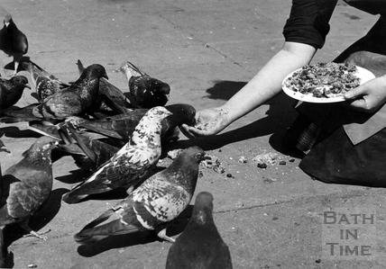 Feeding scraps of food to the pigeon population in Bath, April 1942