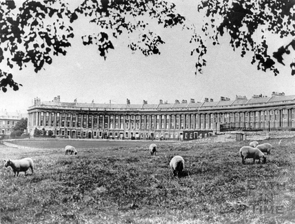 Sheep grazing on the lawns in front of the Royal Crescent before the war, c.1938