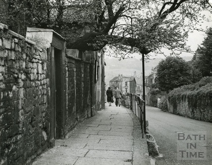 Holloway, Judas Tree c.1965