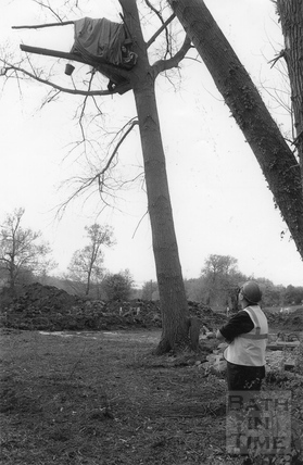 A tree top protest trying to save the tree they are living in 30 April 1994