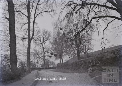Horseshoe Walk, Bath c.1920s