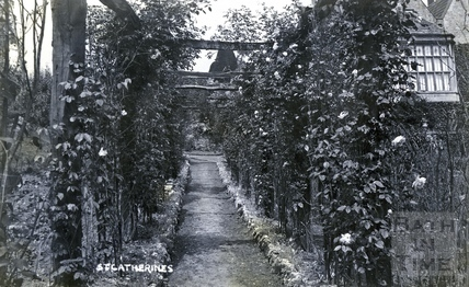 St Catherine's Court, looking north west along a rose lines path c.1905