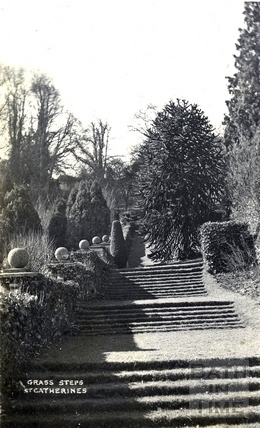St Catherine's Court, the grass steps c.1908