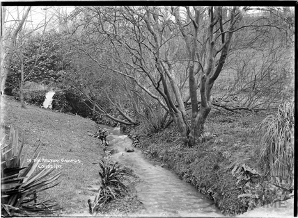 In the Rectory gardens, Combe Hay, October 1936