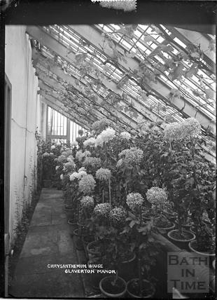 Chrysanthemum House, Claverton Manor, c.1930s