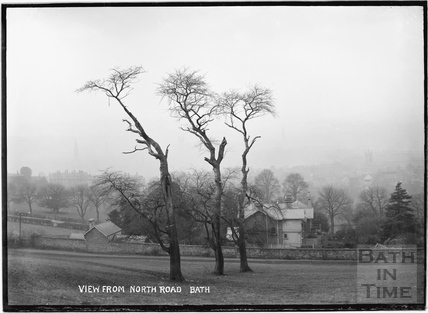 View of Bath from North Road with study of trees, c.1908