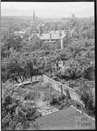 The rear garden of No 31 Sydney Buildings c.1952