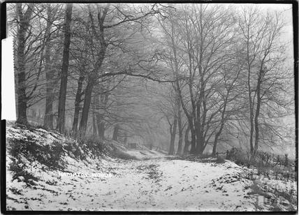 Hampton Woods in Winter c.1920s