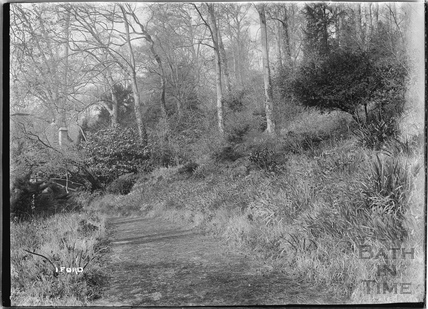 Woodland walk at Iford Manor c.1920s