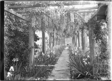The gardens at South Wraxall Manor c.1920s