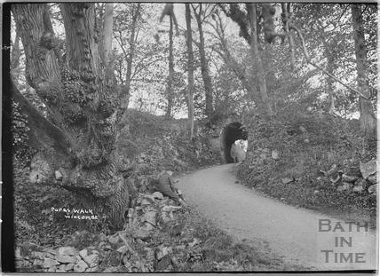 Pope's Walk, Widcombe c.1920s