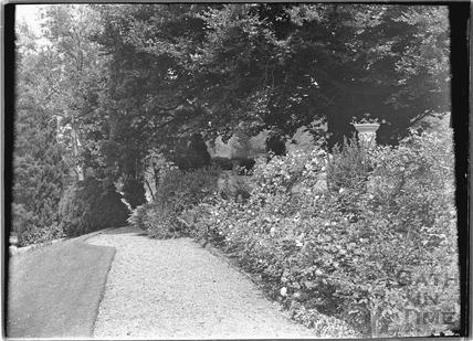 The gardens, Warleigh Manor c.1932