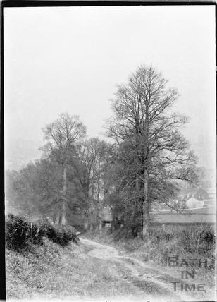 Country Lane from the Downs to Bathampton 1925