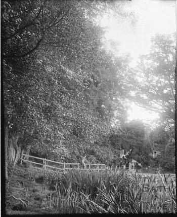Waterfall and lake, Stourhead, Somerset c.1910s