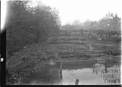 Trout spawning nets, Freshford c.1920s