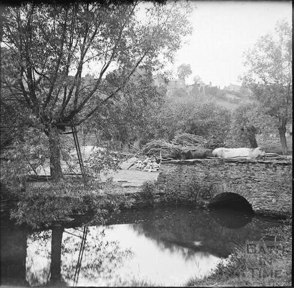 Cattle crossing unidentified bridge over stream c.1890s