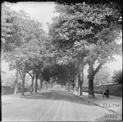 Pulteney Road c.1890s