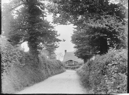 Country Lane with unidentified thatched cottage c.1905