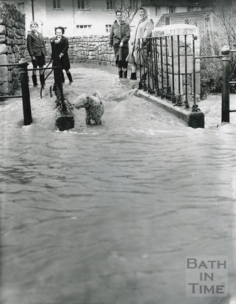 A group of people standing with their dog watching the flood waters, Spa Lane, Larkhall 1960?