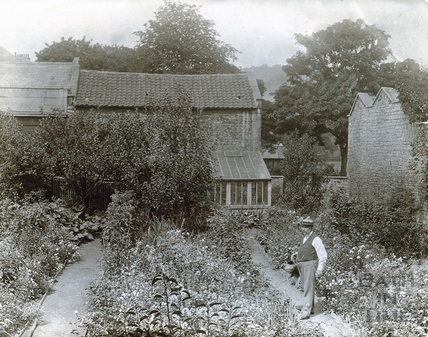 This is thought to be Mr Bence of Batheaston, possibly in the smallholding behind his home at Batheaston Post Office, c.1890