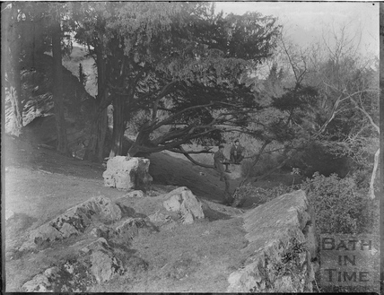 The photographer's twin boys perch on a branch at Bathampton Rocks, c.1920s