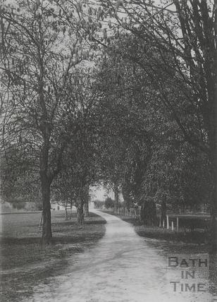 Driveway to Wood House, Twerton c.1903
