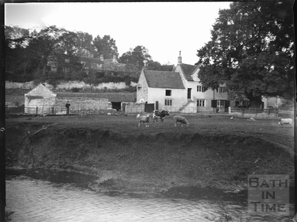 The Inn at Freshford, viewed from across the river, showing the erosion on the river bank c.1900