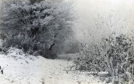 A snowy path in Bathampton Woods c.1920s