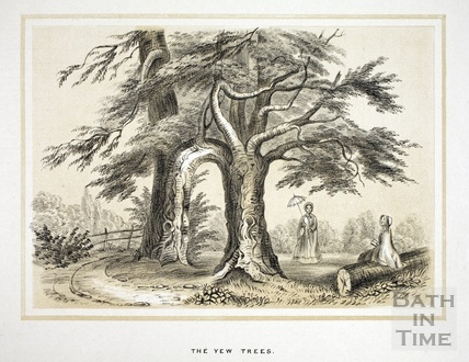 The Yew Trees, unidentified location 1853