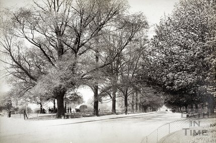 The Royal Avenue, Victoria Park, Bath c.1895