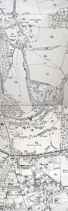 Prior Park Estate 1:2500 OS map c.1950 - detail
