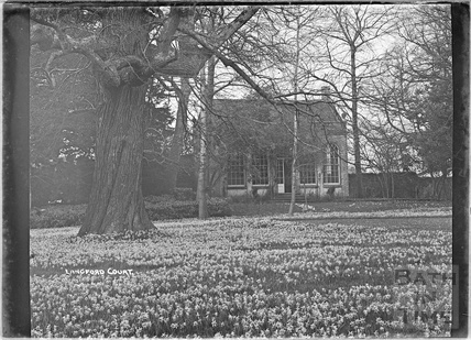 The gardens, Langford Court, Langford, Somerset 9 March 1939