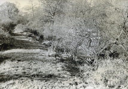 Towpath and watercourse between Edford and Stratton Common c.1950s