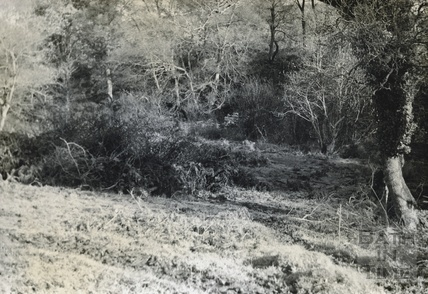 Termination of the canal below Stratton Common c.1950s